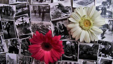 Photo of Narodziny Hitlera i II Wojna Światowa – 1933 – 1945